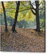 Fall In Stony Brook Canvas Print
