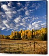 Fall In The Cariboo Canvas Print