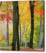 Fall In The Mountains Canvas Print