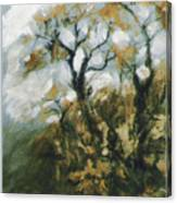 Fall In The Sumacs Canvas Print