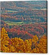 Fall In The Valley Canvas Print
