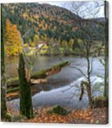 Fall In Vosges National Park Canvas Print