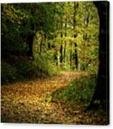 Fall Is Just Around The Corner Canvas Print