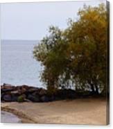 Fall Lake Tree Canvas Print