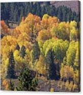 Fall Lands In Western Wyoming Canvas Print