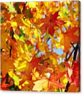 Fall Leaves Background Canvas Print