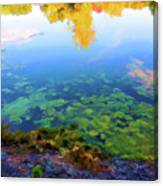 Barely Touching The Surface Of The Water Canvas Print