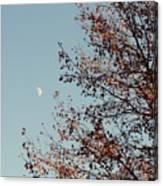 Fall Moon Canvas Print
