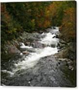Fall Mountain Stream Canvas Print