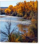 Fall On Animas River Canvas Print