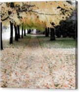 Fall On Oak Street Canvas Print