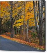Fall On The Cape Canvas Print