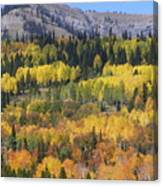 Fall On The Greys River Canvas Print