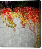 Fall On The Wall Canvas Print