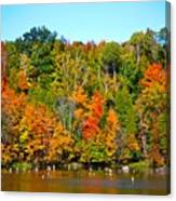 Fall On The Water Canvas Print