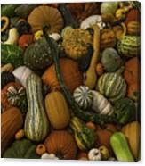 Fall Pile Canvas Print