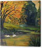 Fall Pond With Swans Canvas Print