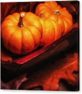 Fall Pumpkins Still Life Canvas Print