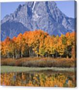 Fall Reflection At Oxbow Bend Canvas Print