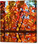 Fall Reflextion Canvas Print