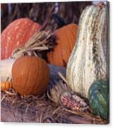 Fall-roadside-produce Canvas Print