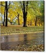 Fall Series 15 Canvas Print