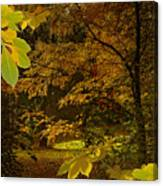 Fall Spendor - Series Number Three Canvas Print