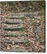 Fall Stairs Canvas Print