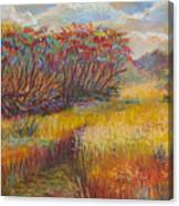 Fall Sumac Fields Canvas Print