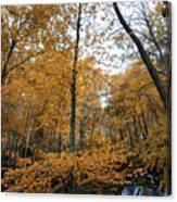 Fall Tees At  Yankee Horse Overlook   Canvas Print