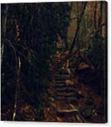 Fall Trail Canvas Print