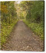 Fall Trail Scene 48 Canvas Print