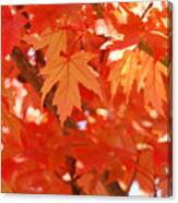 Fall Tree Art Autumn Leaves Red Orange Baslee Troutman Canvas Print