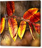 Fall Trees Number One Canvas Print