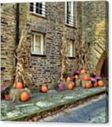 Fall Walkway  Canvas Print