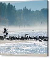 Fall Wasaga Beach Canvas Print