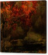 Fall Woods Canvas Print