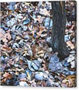Fallen #1 Canvas Print