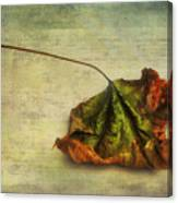 Fallen Down In Summer Canvas Print