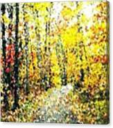 Fallen Leaves Of Autumn Canvas Print