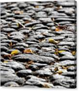 Fallen Leaves On A Street At Autumn Canvas Print