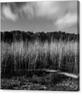 Fallen Timbers Battlefield Canvas Print