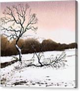 Fallen Tree Stainland Canvas Print