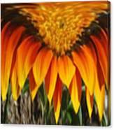 Falling Fire Canvas Print
