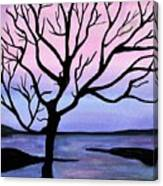 Falling Sky Canvas Print