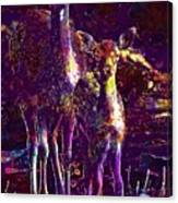 Fallow Deer Doe Fawn Hirsch Young  Canvas Print