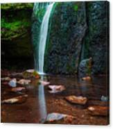 Falls In Bluff Country Canvas Print