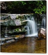 Falls Of Peterskill In Spring I - 2018 Canvas Print