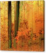 Fanciful Forest Canvas Print