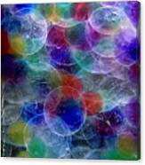 Fanciful Canvas Print